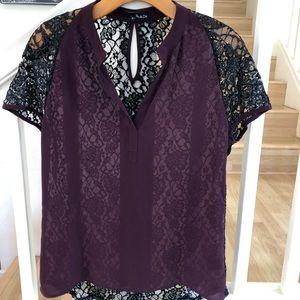 Ro & De Anthro brand plum lace sheer top